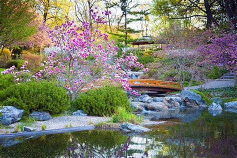 japanese garden elements types examples pictures