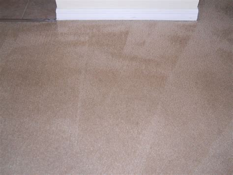 national carpet and upholstery cleaning national carpet cleaning national dye systems in