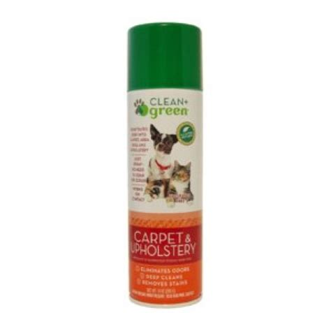 Green Upholstery Cleaner by Clean Green Carpet Upholstery City Center Vacuum