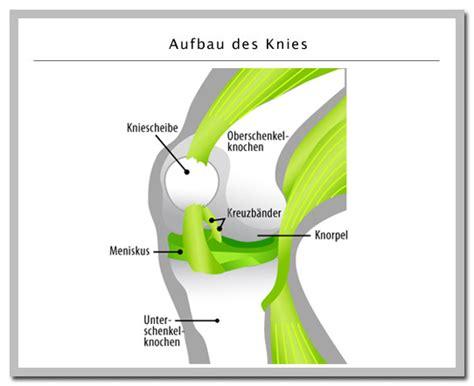 Knieschmerzen Gr 252 Nde Ursachen Was Tun Bei Schmerzen Im
