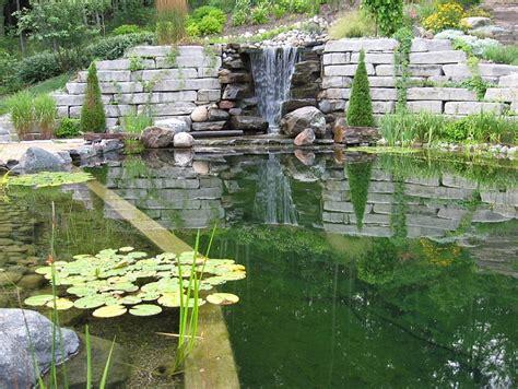 backyard creek backyard landscaping ideas natural pools shaping an