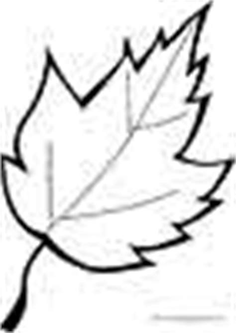 coloring page of small leaves leaves coloring pages free printable coloring sheets for