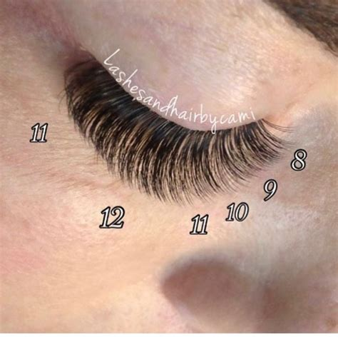 6 Best Eyelashes by 17 Best Images About Lash Business On Lash