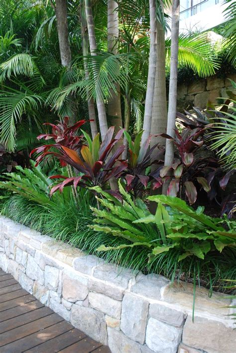 25 best ideas about tropical pool landscaping on
