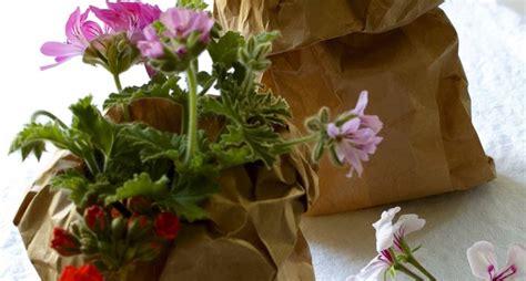 composizione fiori fai da te fiori fai da te composizioni di fiori come realizzare