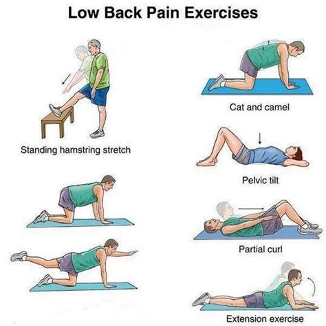 46 best how to relieve back at home images on