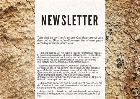 Free Printable Newsletter Templates Email Newsletter Exles How To Write A Newsletter Template