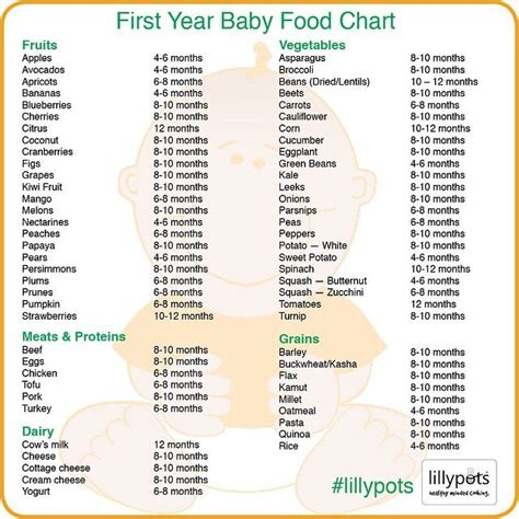 what time should a 2 year old go to bed 25 best ideas about baby first foods on pinterest first