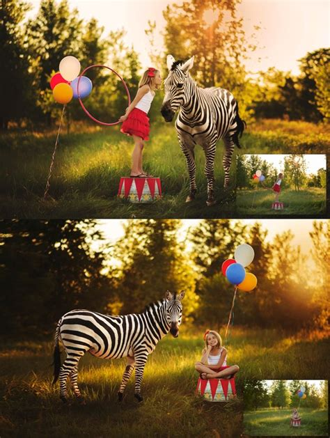 photoshop zebra pattern tutorial 35 best photoshop textures and overlays for photographers