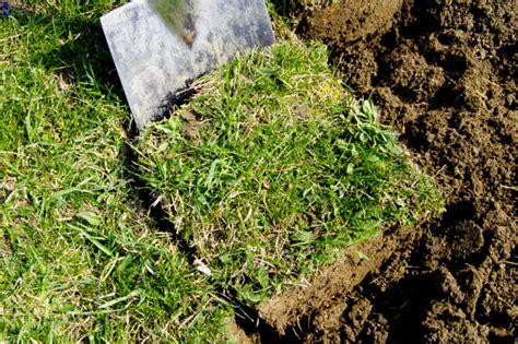 Rasen Erneuern Mit Umgraben 3591 by Rasen Erneuern Mit Umgraben Rasen Jetzt Reparieren Oder