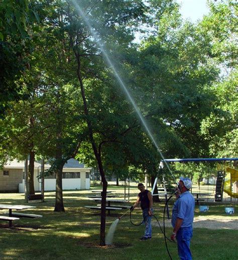 tree spray tree hugger tree lover environmentally safe and