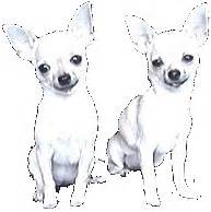 Door For Dog 2 Honden Plaatjes En Animaties Van Animatieplaatjes Nl