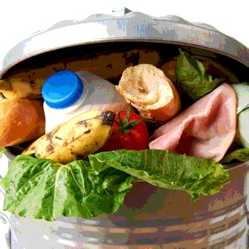cold abyss  food waste food safety magazine