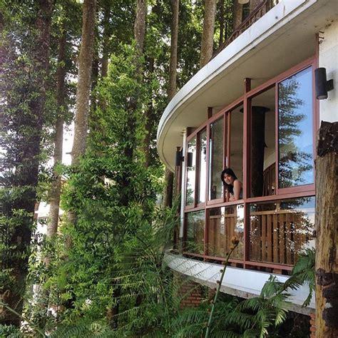 Fantasis Foto Di Pinggir 19 hotel indah di bogor puncak untuk sensasi menginap di