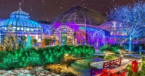 phipps conservatory and botanical gardens pittsburgh pa winter flower show and light garden magic
