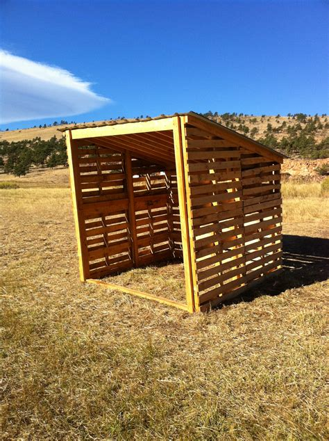 Shed Built Out Of Pallets by Small Pallet Shed Projects