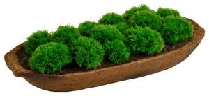 artificial moss contemporary indoor pots and planters