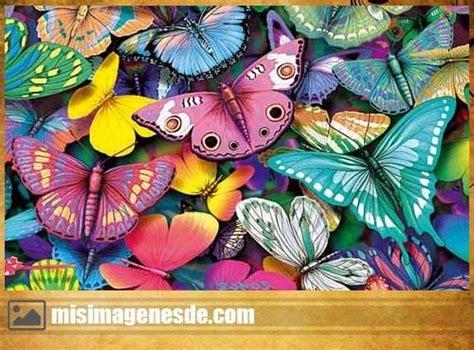 Imagenes De Mariposas Juntas | fotos de mariposas hermosas im 225 genes