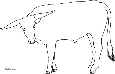 Free Coloring Pages Of Ut Longhorns Longhorns Coloring Pages