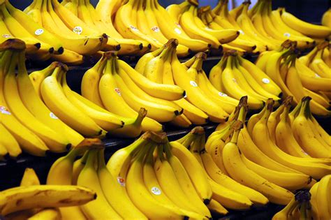 The Bananas file bananas jpg wikimedia commons