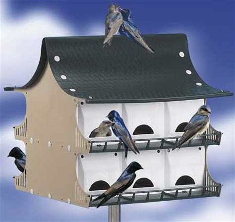 purple martin house bird house martin plans com purple house plans