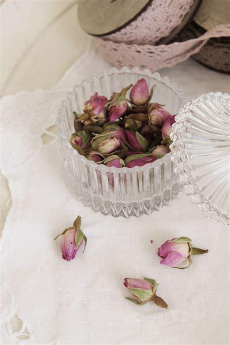 fiori essiccati fiori essiccati clelia can 232 sito ufficiale