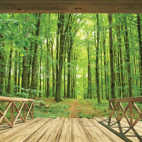 Komar Photo Wall 4522 Forest Photo Murals Wallpaper Wallart walltastic woodland forest wallpaper mural