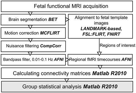frontiers fetal functional imaging portrays