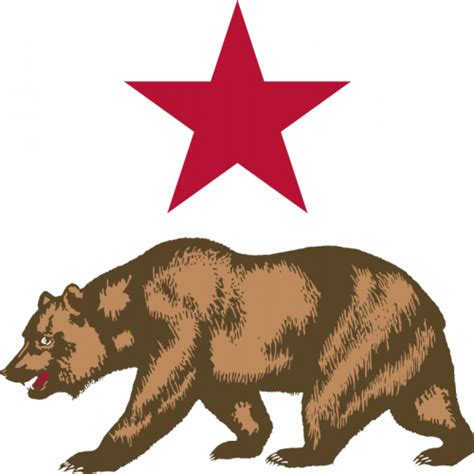 california bear outline cliparts co