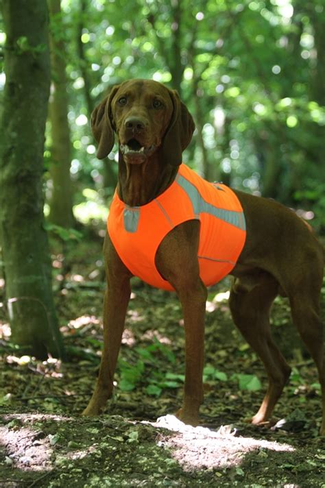 Soft Green Color by Hurtta Polar High Visibility Dog Vest