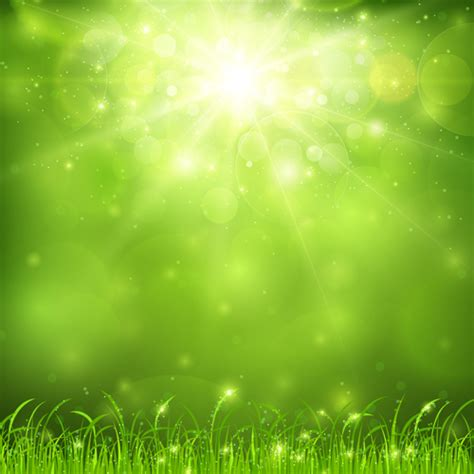 green nature and sunlight background vector vector