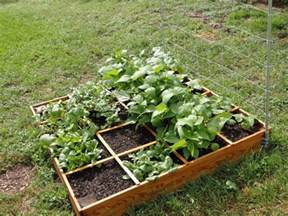 Ideal Vegetable Garden Layout Small Square Foot Backyard Vegetable Garden House Design With Wire Trellis And Wood Raised Bed Ideas