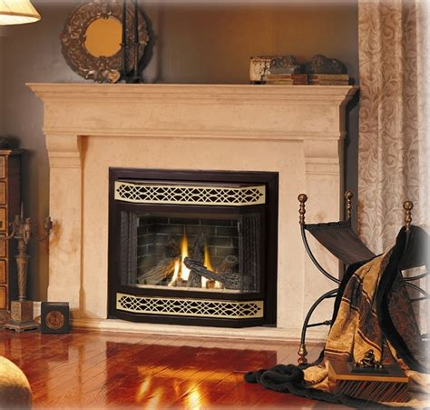 Napolean Fireplaces by Napoleon Fireplaces Wood Burning Gas Fireplaces By
