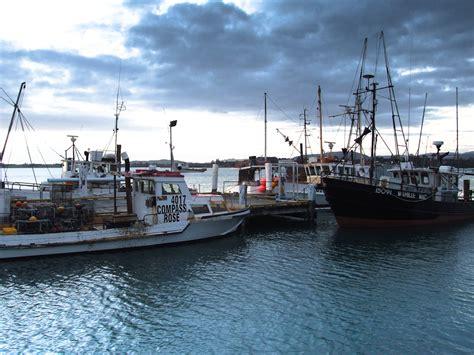charter fishing boats for sale nz barhun for you new zealand fishing boat
