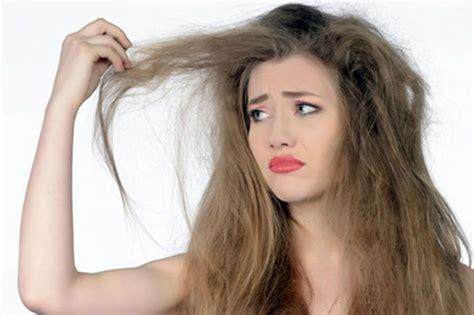 cara membuat warna rambut coklat alami cara merawat rambut rusak secara alami sebatin com