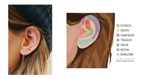 ear tattoo pain level names of different ear piercings and pain levels lee