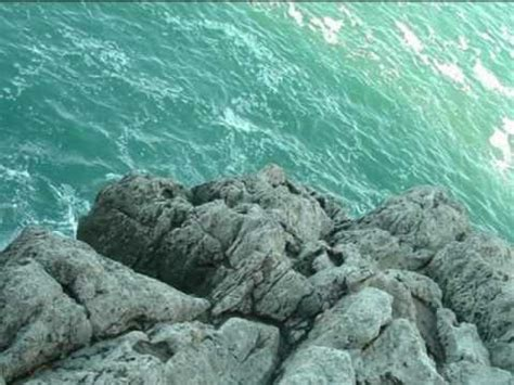 videos de sirenas encontradas sirenas reales encontradas vivas 2010 imagui