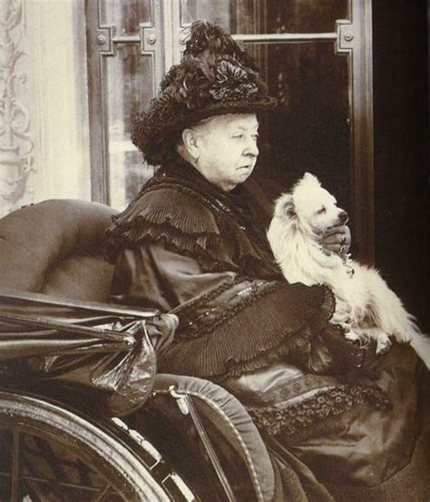 google images queen victoria victoria the queen by julia baird doc s books