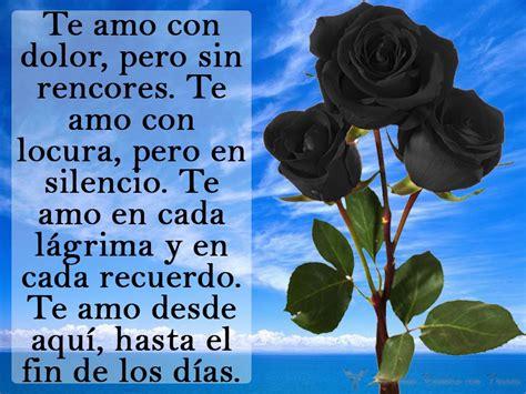 imagenes de rosas negras para whatsapp im 225 genes de flores negras con frases de dolor y olvido
