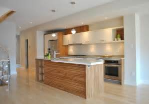 kitchen design houzz kitchen 007 modern kitchen ottawa by tanner vine 2go custom kitchens inc