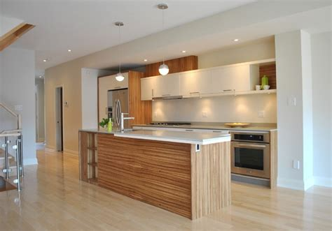 Houzz Modern Kitchen Cabinets Kitchen 007 Modern Kitchen Ottawa By Vine 2go Custom Kitchens Inc