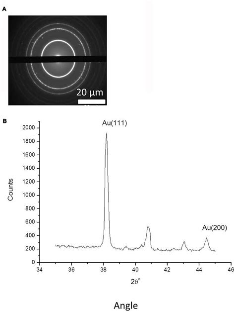 pattern gold nanoparticles frontiers a genetically modified tobacco mosaic virus