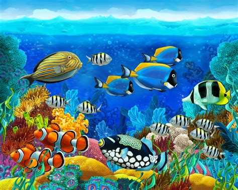 Puzzle Sea coral reef jigsaw puzzle in the sea puzzles on
