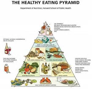 food pyramid and your health dietmd hawaii