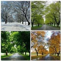seasons  india essay   types  seasons  india