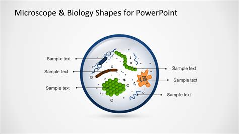 what is a template in biology microscope biology shapes for powerpoint slidemodel