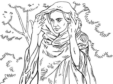thrones coloring book for adults 1000 images about coloring pages on coloring