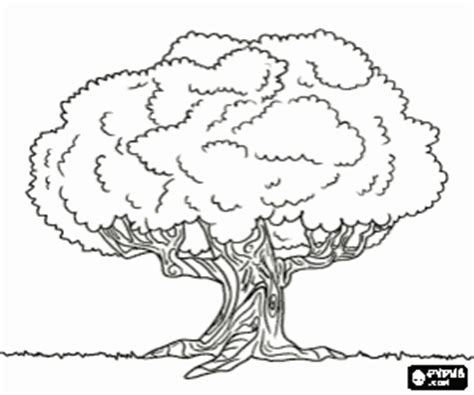 trees coloring pages printable games