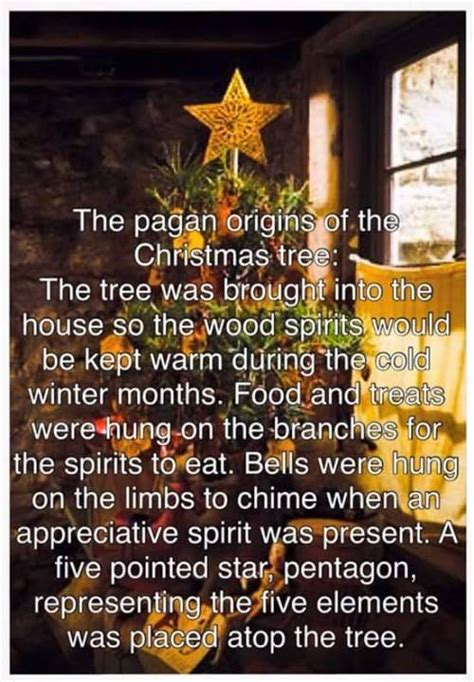 pagan origin of christmas tree i m the grinch who stole p shifting reddqween witchyshelly pagan origins and