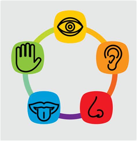 imagenes integracion sensorial integraci 243 n sensorial proyecto espiga